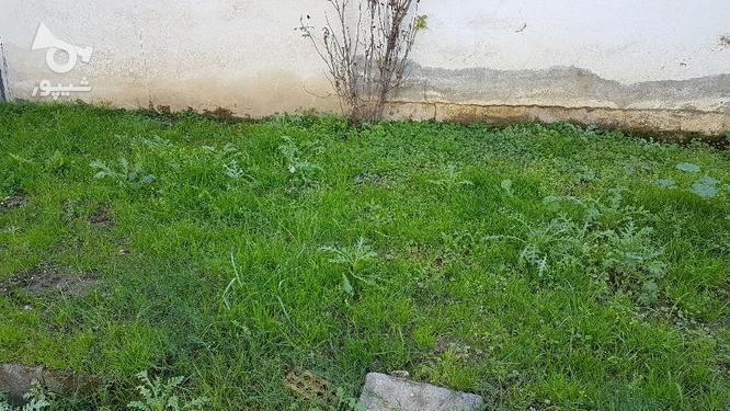 زمین مسکونی 480 متر سندملک بابل میدان اوقاف  در گروه خرید و فروش املاک در مازندران در شیپور-عکس1