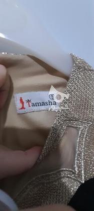 پیراهن مجلسی در گروه خرید و فروش لوازم شخصی در مازندران در شیپور-عکس2