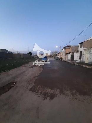 زمین با متراژ 163 در گروه خرید و فروش املاک در البرز در شیپور-عکس3