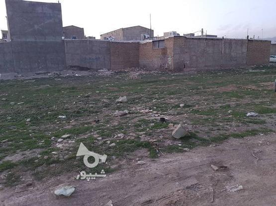 زمین با متراژ 163 در گروه خرید و فروش املاک در البرز در شیپور-عکس2