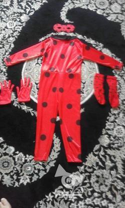 لباس دختره کفشدوزکی در گروه خرید و فروش لوازم شخصی در تهران در شیپور-عکس1