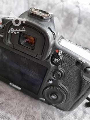 دوربین Canon 5D Mark3 در گروه خرید و فروش لوازم الکترونیکی در یزد در شیپور-عکس2