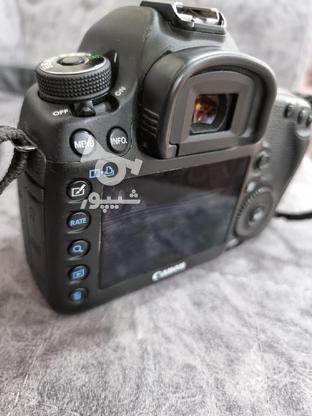 دوربین Canon 5D Mark3 در گروه خرید و فروش لوازم الکترونیکی در یزد در شیپور-عکس1