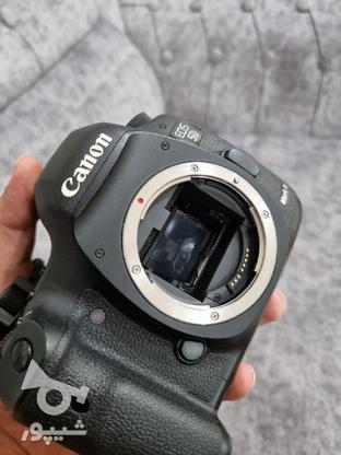 دوربین Canon 5D Mark3 در گروه خرید و فروش لوازم الکترونیکی در یزد در شیپور-عکس8