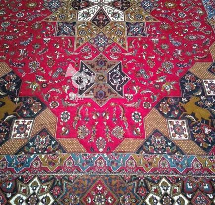 دوتخته فرش12متری سالم وتمیز در گروه خرید و فروش لوازم خانگی در تهران در شیپور-عکس2