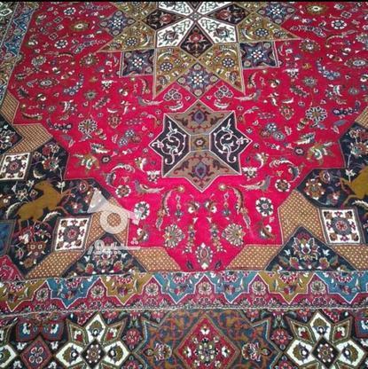 دوتخته فرش12متری سالم وتمیز در گروه خرید و فروش لوازم خانگی در تهران در شیپور-عکس1