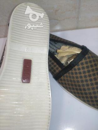 کفش راحتی زنانه برند buddy در گروه خرید و فروش لوازم شخصی در البرز در شیپور-عکس2