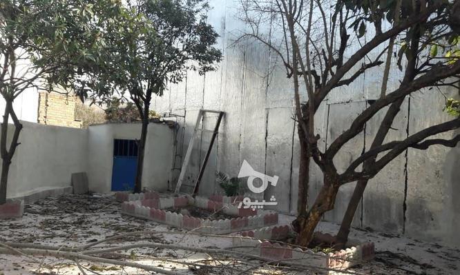فروش خانه کلنگی196متری خیابان مهیار در گروه خرید و فروش املاک در مازندران در شیپور-عکس1