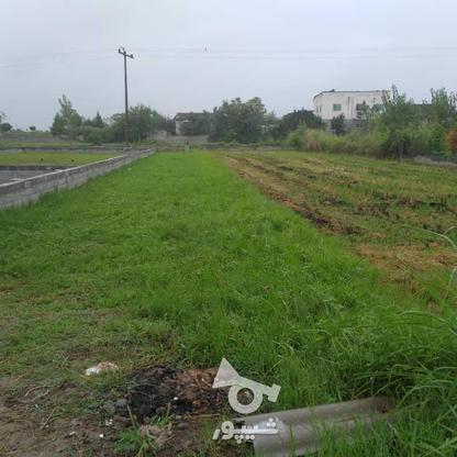 زمین مسکونی در فریدونکنار با بهترین شرایط خرید در گروه خرید و فروش املاک در مازندران در شیپور-عکس2