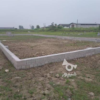 زمین مسکونی در فریدونکنار با بهترین شرایط خرید در گروه خرید و فروش املاک در مازندران در شیپور-عکس4