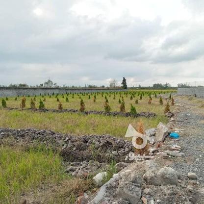 زمین مسکونی در فریدونکنار با بهترین شرایط خرید در گروه خرید و فروش املاک در مازندران در شیپور-عکس3