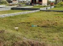 زمین مسکونی در فریدونکنار و سرخرود با شرایط عالی  در شیپور-عکس کوچک