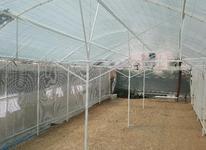 اجرای انواع گلخانه پیش ساخته، خانگی و نیمه صنعتی در شیپور-عکس کوچک