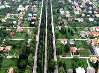 باغ 1200 متر،با تمامی امکانات در شیپور-عکس کوچک