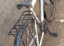 دوچرخه 26 در حد نو  در شیپور-عکس کوچک