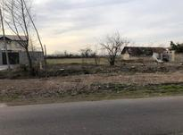 فروش زمین مسکونی 1000 متر در کوچصفهان در شیپور-عکس کوچک