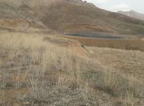 دو هکتار زمین در روستای الولک  در شیپور-عکس کوچک