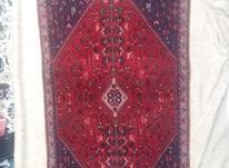 قالیچه دستباف  در شیپور-عکس کوچک