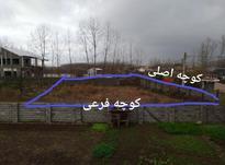 فروش زمین مسکونی 600 متر در لنگرود پاپکیاده در شیپور-عکس کوچک