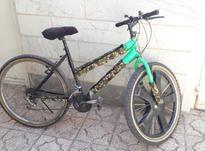 دوچرخه سایز 26 المپیا  در شیپور-عکس کوچک