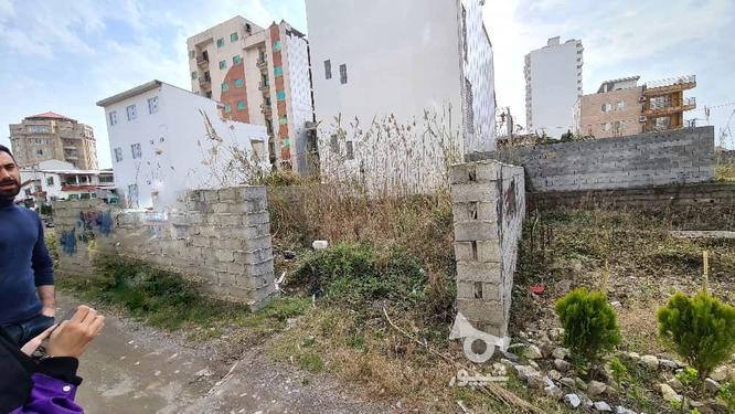 فروش 2 قواره 300 متری زمین مسکونی در گروه خرید و فروش املاک در مازندران در شیپور-عکس2