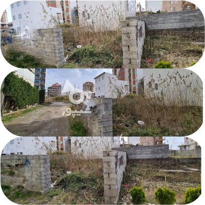 فروش 2 قواره 300 متری زمین مسکونی در گروه خرید و فروش املاک در مازندران در شیپور-عکس1