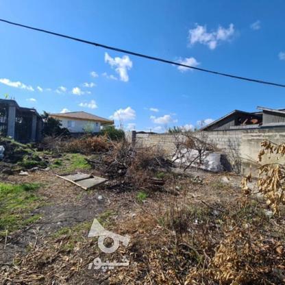 فروش زمین مسکونی 388 متری محصور شده در گروه خرید و فروش املاک در مازندران در شیپور-عکس1