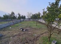 فروش زمین 258 متری مناسب برای سرمایه گذاری در شیپور-عکس کوچک
