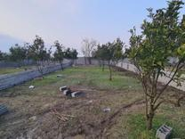 فروش زمین 258 متری مناسب برای سرمایه گذاری در شیپور