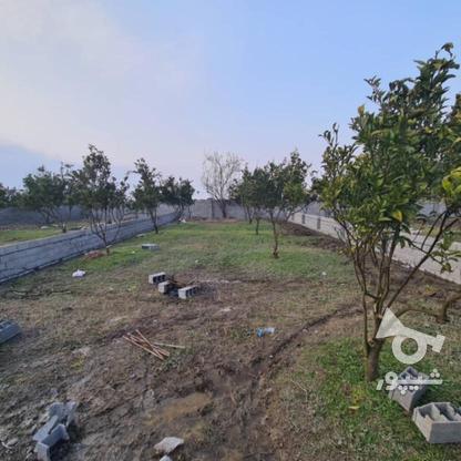 فروش زمین 258 متری مناسب برای سرمایه گذاری در گروه خرید و فروش املاک در مازندران در شیپور-عکس1
