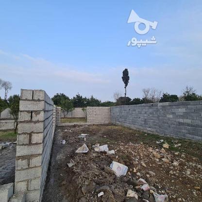 فروش زمین 258 متری مناسب برای سرمایه گذاری در گروه خرید و فروش املاک در مازندران در شیپور-عکس4