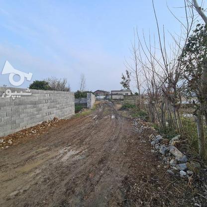 فروش زمین 258 متری مناسب برای سرمایه گذاری در گروه خرید و فروش املاک در مازندران در شیپور-عکس3