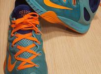 کفش حرفه ای بسکتبال برند نایک سایز 40 در شیپور-عکس کوچک