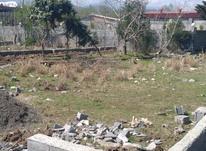 فروش زمین مسکونی 290 متر در نوشهر در شیپور-عکس کوچک