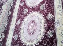فرش 2 در 3 در شیپور-عکس کوچک