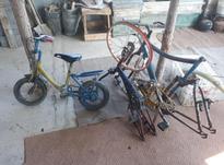 تعداد ی دوچرخه در سایز های مختلف  در شیپور-عکس کوچک