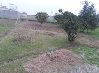 فروش زمین باغی 171 متری الحاق به بافت در قائم شهر در شیپور-عکس کوچک