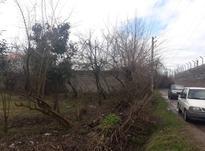 285متر زمین مسکونی در اطراف کوچصفهان در شیپور-عکس کوچک