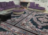 فرش پاتریس عنصری قائمشهر در شیپور-عکس کوچک