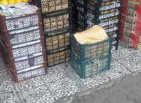کارگر ساده برای میوه فروشی در شیپور-عکس کوچک
