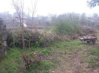 392 متر زمین و ویلای قدیمی روستایی در املش  در شیپور-عکس کوچک