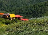 زمین مسکونی 206 متر در منطقه ورسک در شیپور-عکس کوچک