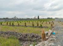 زمین مسکونی 200 متر در فریدونکنار نقد و اقساط در شیپور-عکس کوچک