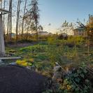 چندین قطعه  زمین مسکونی 348 متر در آستانه اشرفیه