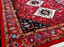 بافنده فرش دستباف در شیپور-عکس کوچک