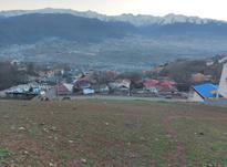 فروش زمین 2000 متری در کلاردشت در شیپور-عکس کوچک
