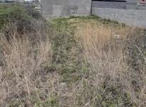 فروش زمین مسکونی 200 متر مسکونی رینگ داخلی در شیپور-عکس کوچک