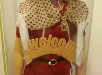 عروسک کاملا نو  در شیپور-عکس کوچک
