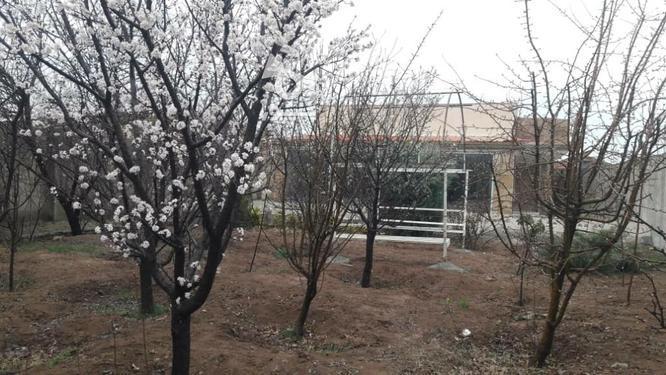 باغ ویلا لوکس در سهیلیه  در گروه خرید و فروش املاک در تهران در شیپور-عکس2