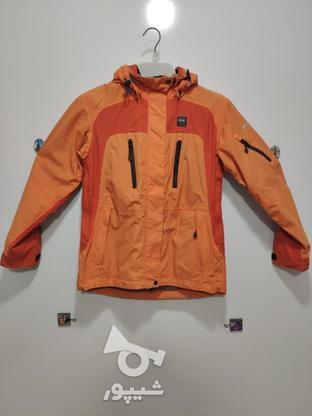 بادگیر ، برند everest , سایز : 36 ، کوهنوردی ، حرفیه  در گروه خرید و فروش لوازم شخصی در تهران در شیپور-عکس1